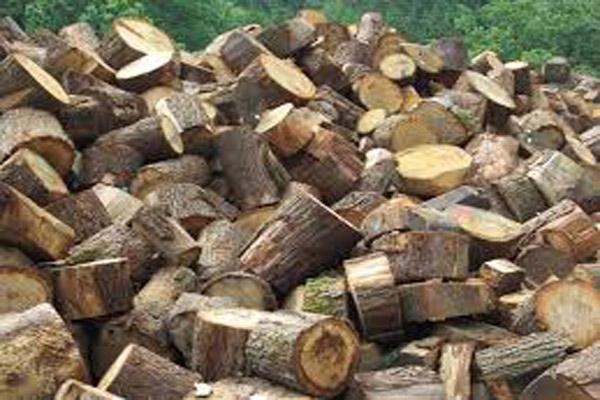 Miješano drvo