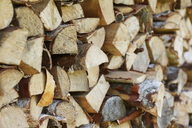Vrste drva za spaljivanje u kaminu